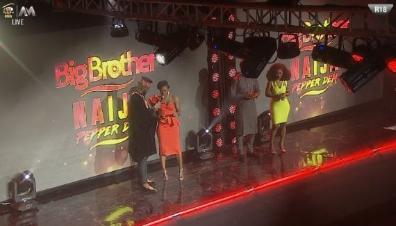 how to watch bbnaija 2019 live